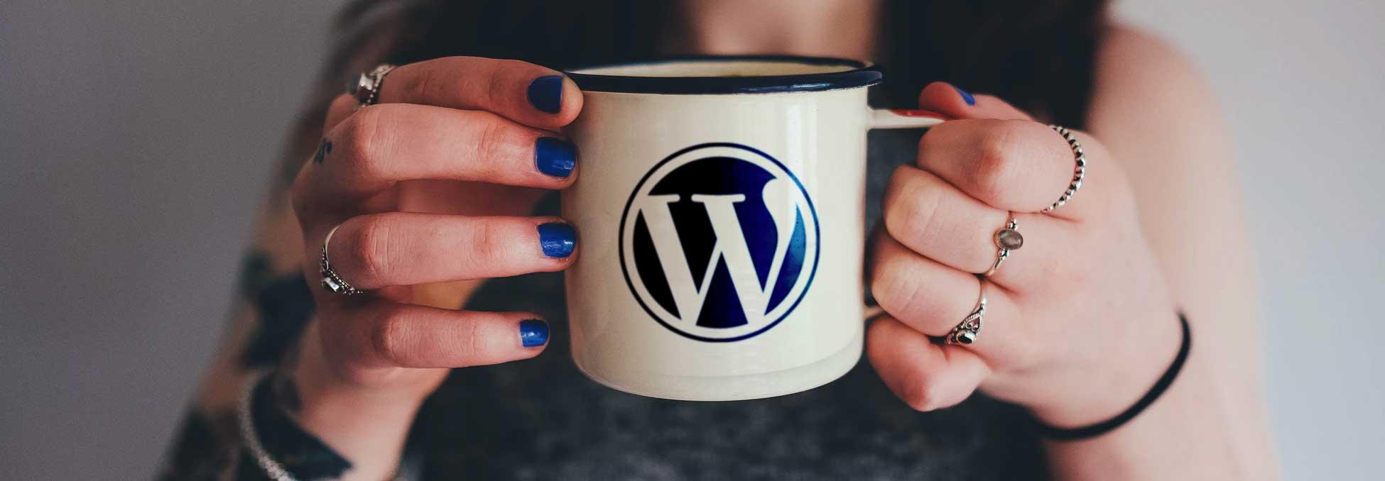 Top WordPress Questions